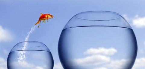 Teama de succes sau cum ne sabotam fara sa stim
