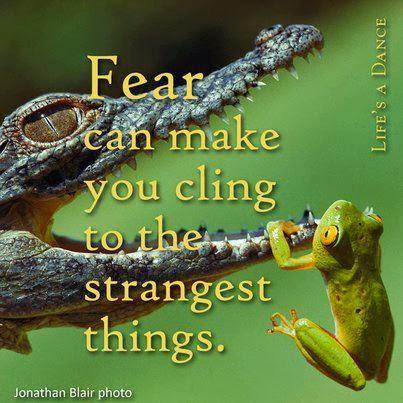 teama de abandon